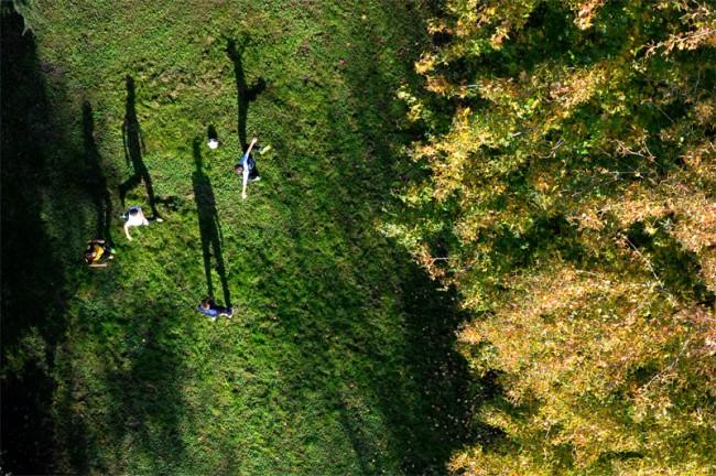 Lange schaduwen in de herfstzon. Foto: Olivier Morin/Dronestagram (Nikon Coolpix)
